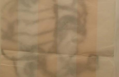 """פסימיות/אופטימיות, 2016, דיו על נייר, 35X23 ס""""מ"""